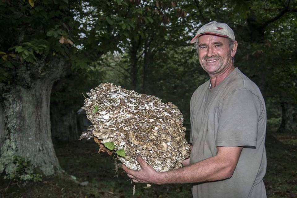 Come togliere un fungo da ununghia a mano